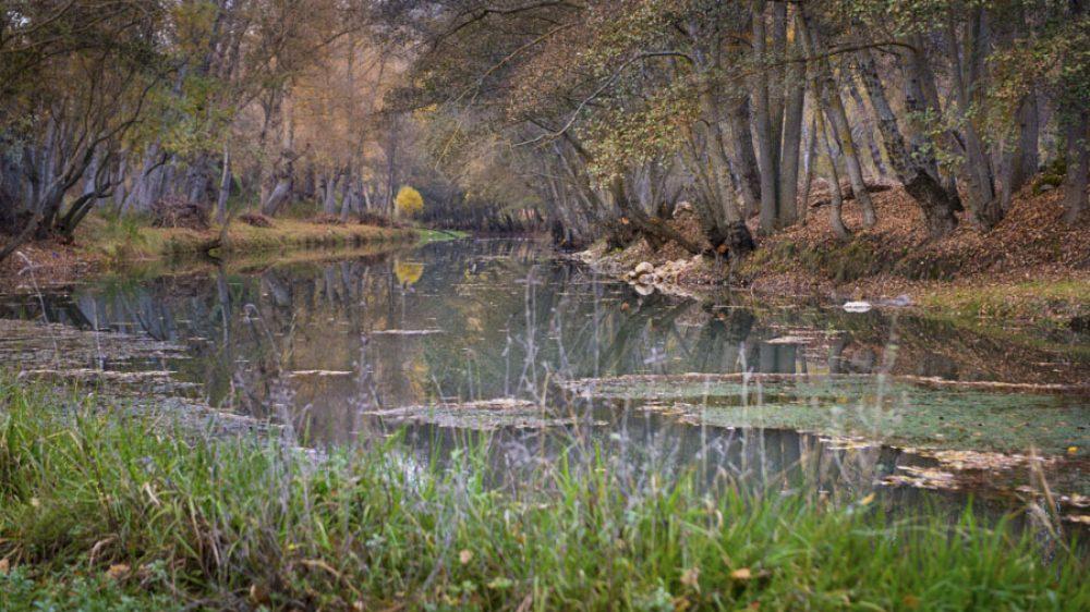 Río Bornova